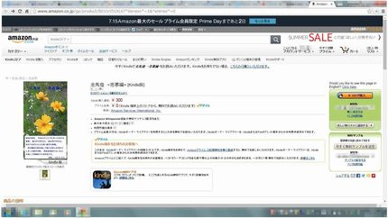 Amazon販売ページ_2